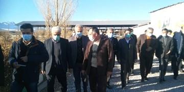 افتتاح گاوداری 6 هزار راسی در قروه/ایجاد اشتغال مستقیم برای 120 نفر