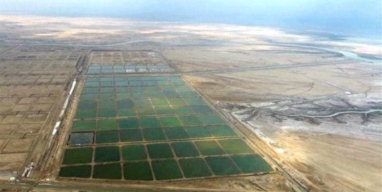 بزرگترین شهرک شیلاتی کشور در گناوه افتتاح میشود