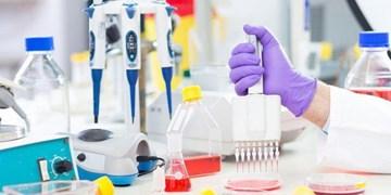 700 هزار خدمت آزمایشگاهی به تحقیقات قدرتمند حوزه فناوری اختصاص یافت