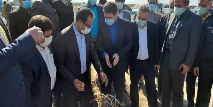 خسارت بیش از 2 هزار میلیارد تومانی سرما به کشاورزی جنوب کرمان