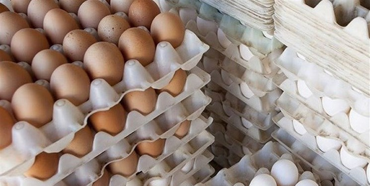 برقراری نهاده در برابر محصول برای تنظیم بازار تخم مرغ