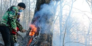 آتشسوزی جنگلهای رامسر