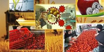 ضرورت ایجاد صنایع تبدیلی جدید و های تک با توجه به ذائقه مردم / برخورد با تغییر کاربری اراضی کشاورزی