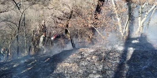 وقوع 10 فقره آتشسوزی در اراضی ملی استان طی یک سال گذشته