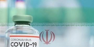 واکسن کرونا رایگان در اختیار محرومین قرار خواهد گرفت