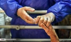 شناسایی ۸۱ بیمار جدید کرونایی در مازندران