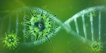 جانسون: کرونای انگلیسی مرگبارتر از گونه اولیه ویروس است