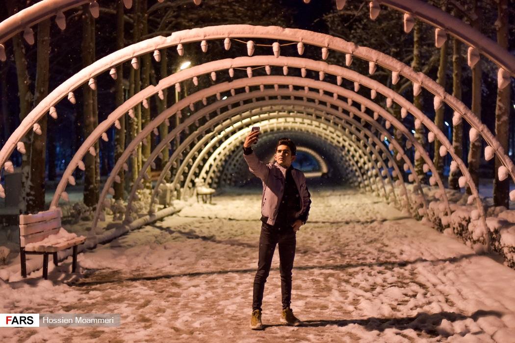 مردم در حال عکاسی در شب های برفی