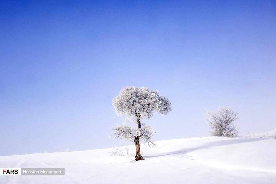 برف در اطراف بجنورد