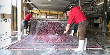 دردسرهای مراجعه به قالیشوییهای غیرمجاز در کرج