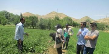 لزوم بهرهگیری از ظرفیت جوانان متخصص بسیجی با هدف توسعه پایدار جوامع روستایی