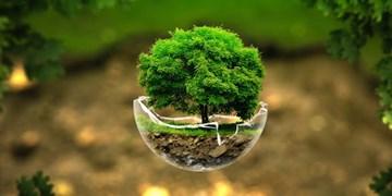 حمایت مجلس از طرحهای زیستمحیطی /  سلامت محیط زیست میتواند از طریق توسعه برنامهریزیشده و پایدار تضمین شود