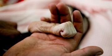 فرزندان متولد 1400 سهامدار میشوند