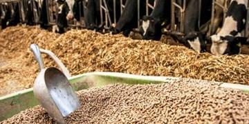58 درصد کالاهای اساسی وارداتی نهادههای تولید گوشت و مرغ بود