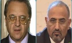 گفتوگوی رئیس شورای انتقالی جنوب یمن با مقام روسیه