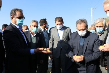 سفر وزیر جهاد کشاورزی به جنوب کرمان