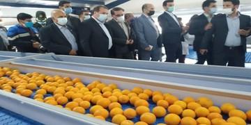 افتتاح طرح صنعتی تولید کنسانتره میوه و مرکبات در جهرم