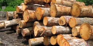 محموله  چوب قاچاق در گچساران کشف شد