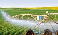 ایران از کشوری تکمحصولی به صادرکننده محصولات کشاورزی تبدیل شده است