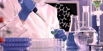 بررسی بیش از ۳ هزار نمونه در آزمایشگاه غذا و داروی کرمانشاه