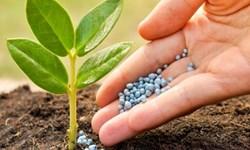 گرانی کودهای شیمیایی، تهدیدی برای کشاورزی لرستان