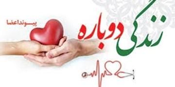 نهمین ایثار ماندگار در زنجان ثبت شد/ اهدای کلیهها، قلب و کبد مرحوم قربانعلی صالحی به بیماران نیازمند