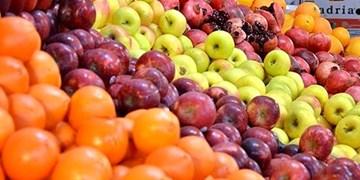 توزیع حدود ۳۰۰ تن سیب و پرتقال شب عید در شاهرود
