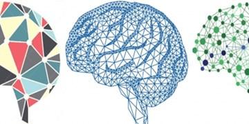 چالشی برای ترویج علوم شناختی میان دانشآموزان و دانشجویان راهاندازی شد