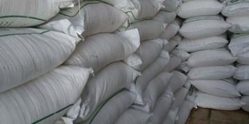 عبور تولید شکر از مرز 500 هزار تن در شرکت توسعه نیشکر