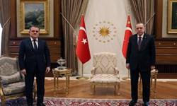 وزیر خارجه جمهوری آذربایجان با اردوغان دیدار کرد