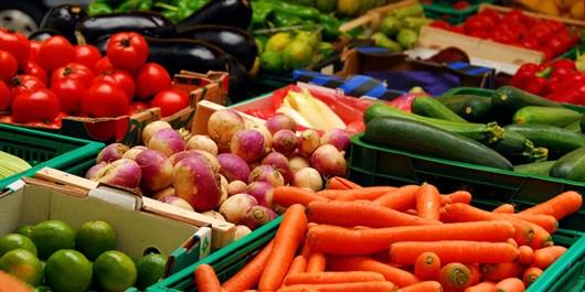 همکاری قرقیزستان و روسیه در تأمین متقابل محصولات کشاورزی