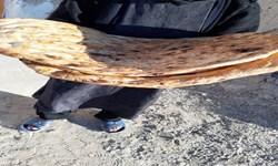 توزیع نان صلواتی در سیستان