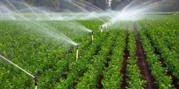 آبیاری دو مرحلهای مزارع کشاورزی 5 شهرستان سیستان