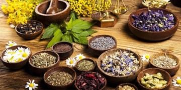 4 ویژگی منحصر به فرد در  گیاهان دارویی که صنایع را متحول کرد