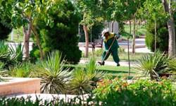 افزایش سرانه فضای سبز محلات در منطقه ۶ قم/اجرای طرح ساماندهی حریم دکلهای برق منطقه