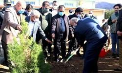 درخواست استاندار برای ساخت یادمان کشتههای کرونا/ بازوند: به یاد هر فوتی یک درخت میکاریم!