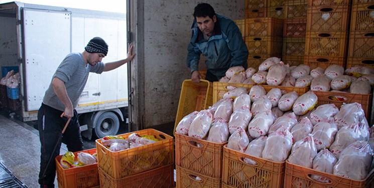 واردات 50 هزار تن گوشت مرغ به گمرک ابلاغ شد