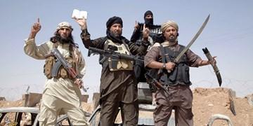 گزارش مفصل صنعاء از فعالیت القاعده در استان مأرب