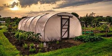 راهنمای جامع پوشش گلخانه