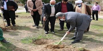 کاشت درخت به یاد شهدای مداح و پیرغلامان/ رونمایی از بوستان شهدای ستایشگر