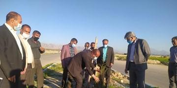 زیباسازی شهر دهدشت در آستانه نوروز/ یکهزار و 700 نهال  غرس میشود