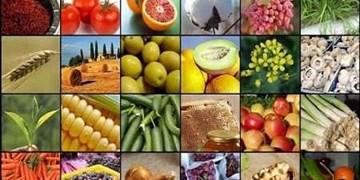 کارنامه یکسال کشاورزی کشور/ از افزایش تولید تا آشفتگی بازار و اصرار به مسیر پراشتباه