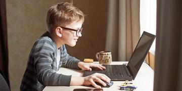 آیا آمریکا دارای آزادترین اینترنت است؟/نحوه استفاده از اینترنت، ملاک تشخیص صلاحیت سرپرست کودک آمریکایی