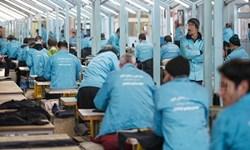 فیلم| اشتغال زندانیان؛ فرصتی که برای بازگشت فراهم است