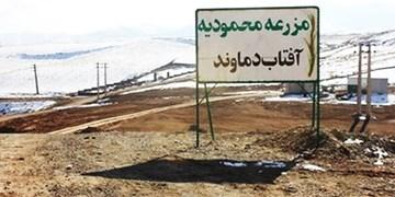 زمینخواری 176 هکتاری با همکاری یک نهاد دولتی/ دستگاه قضا رای به تخریب بناهای غیر مجاز مزرعه «محمودیه» داد