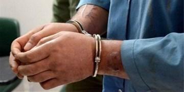 دستگیری سارقان سیم و کابل در میامی/ ۱۰ فقره سرقت کشف شد