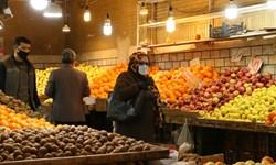 فیلم| عضو اتاق بازرگانی اراک: کم کاری دولت در حمایت عامل اصلی گرانی میوه است