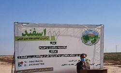 مهار 2 هزار هکتار از کانون های بحرانی گردوخاک در ماهشهر
