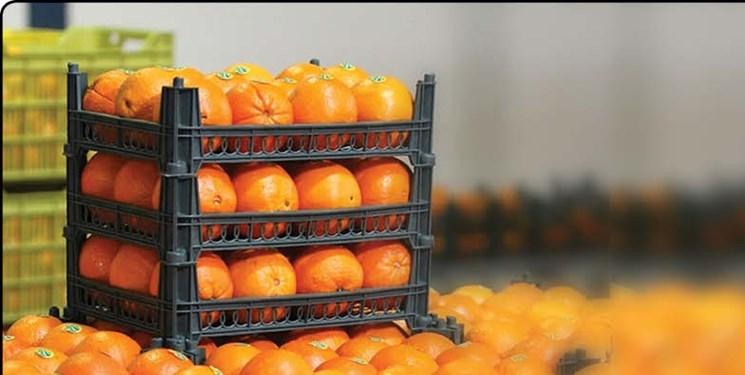 سازمان تعاون روستایی در 100 نقطه تهران میوه توزیع می کند