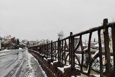 عکس| روز برفی در رشت